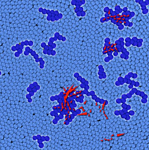 In a dense disordered packing, the particles labeled in dark blue belong to soft spots that have a propensity to fail via particle rearrangements.  The red arrows mark particles that actually rearrange when the system is placed under a mechanical load.  This image shows that rearrangements tend to occur at soft spots.